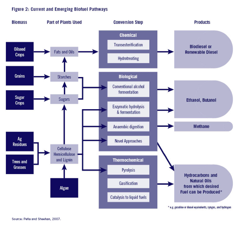 Current and Emerging Biofuel Pathways